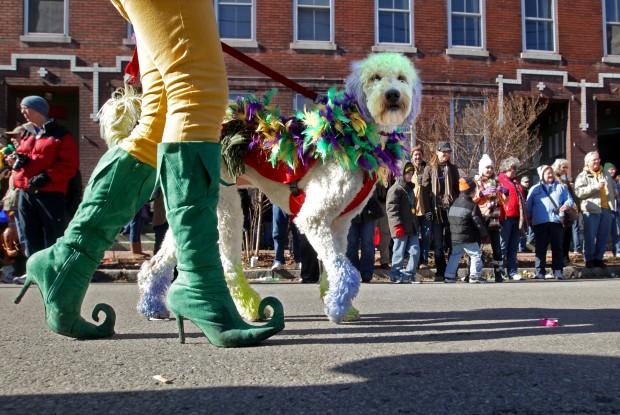 The 2013 Mardi Gras Season Is Here