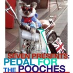 pedal for pooches