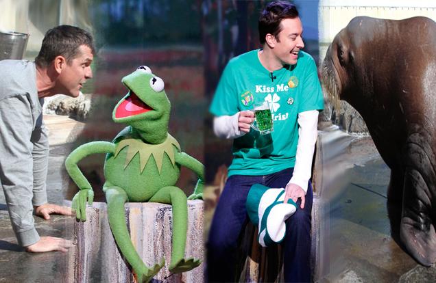 Fallon and Kermit, Harbaugh and Walrus