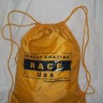 great amazing race