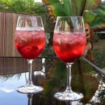 Cranberry-Mimosas-from-Susan-S