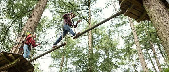 CrossingTreeTopAdventure