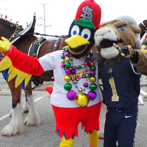 St. Louis mascots Fredbird, of the St. Louis Cardinals and Rampage, of the St. Louis Rams, take a moment before the 2014 Bud Light Grand Parade to get their picture taken in front of a Budweiser Clydesdale