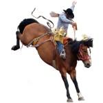 lonestar rodeo