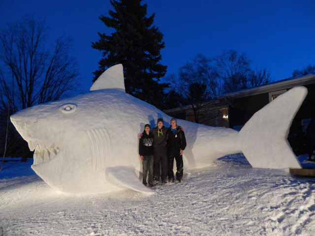 Bartz Snow Sculptures Snow Shark